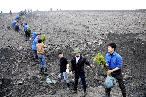 Các công ty than đá triển khai các giải pháp hoàn nguyên bảo vệ môi trường