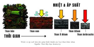 Read more about the article Than đá được hình thành như thế nào?